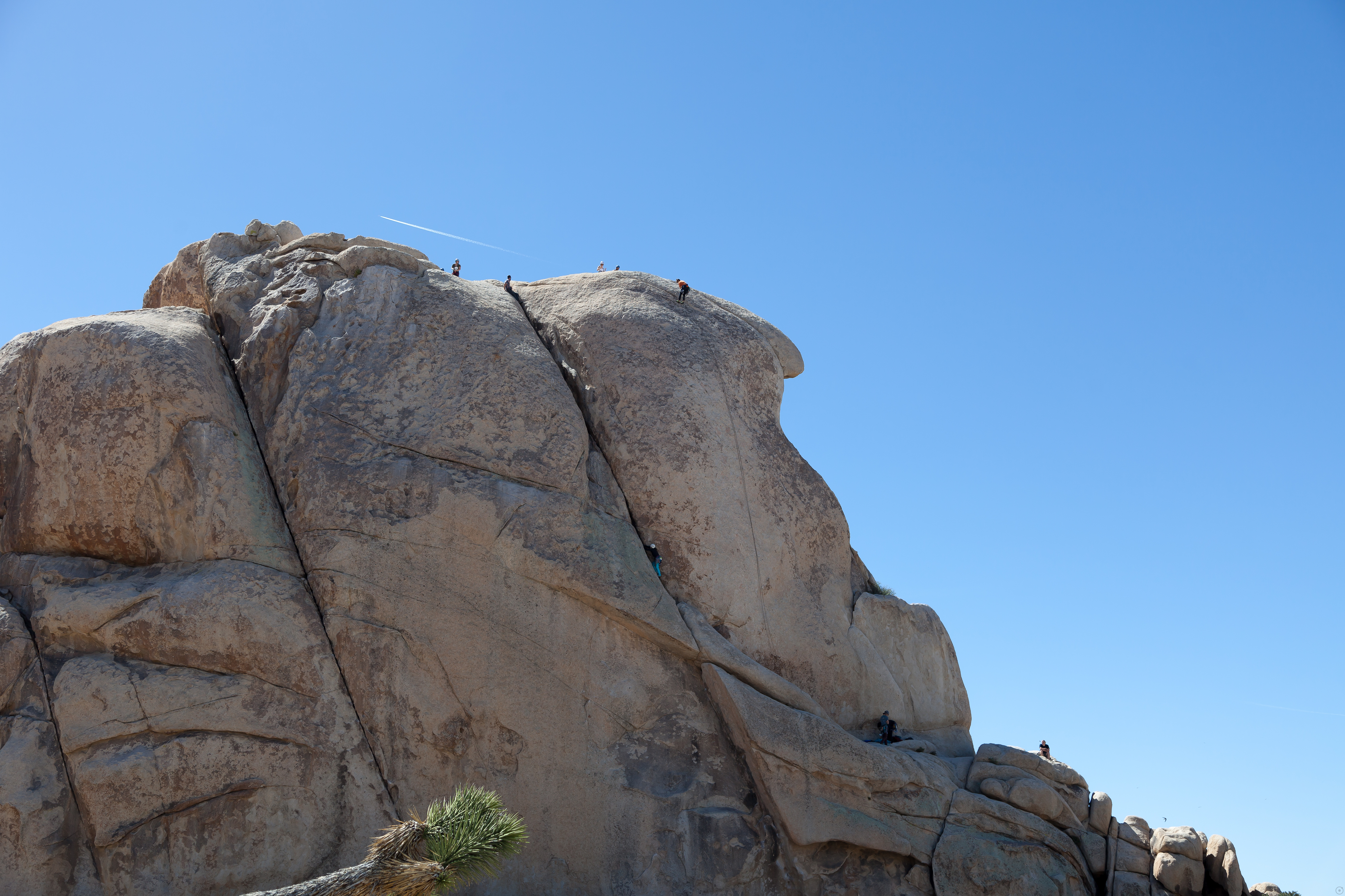 climbers at the top of Intersection Rock in Joshua Tree National Park